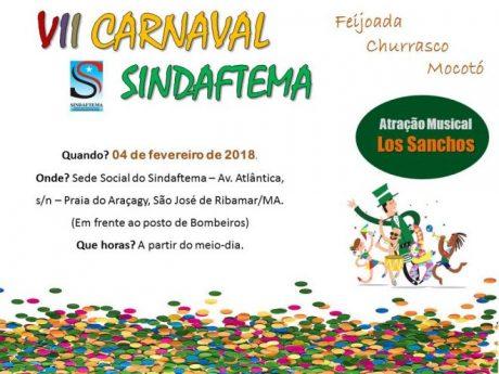 Vem aí o  VII Carnaval Sindaftema.