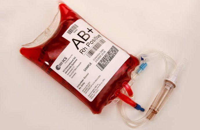 Atenção Auditor! Nova carteira funcional deverá conter informação sanguínea.